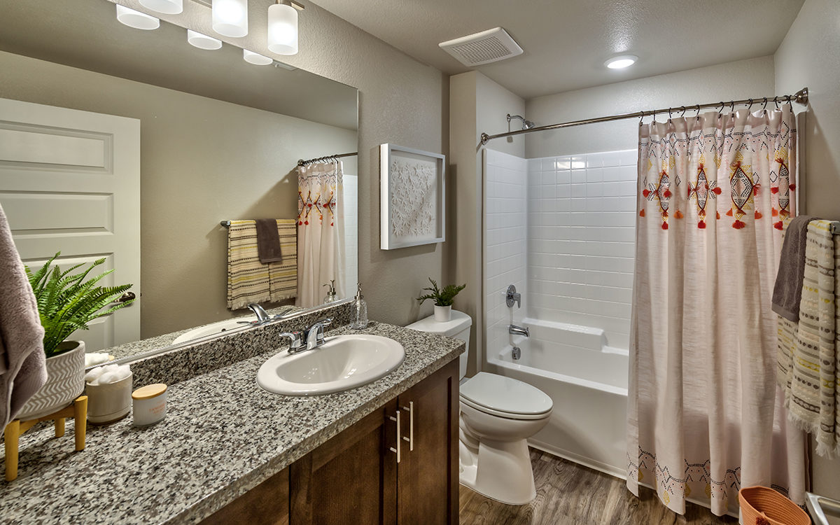 Carson Hills Apartments - Carson City NV - Bathroom
